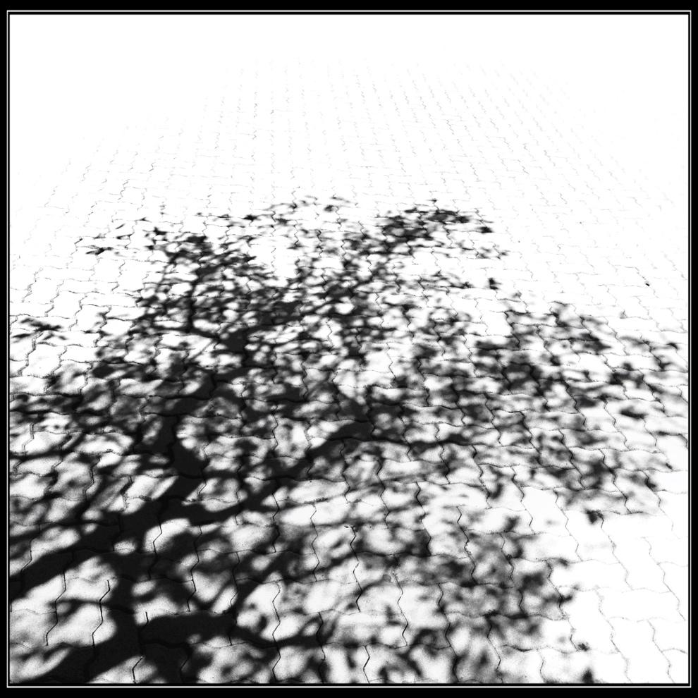 20120914-215934.jpg